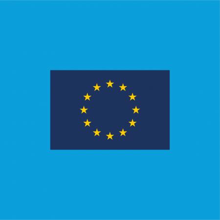 EU Flag, infografik